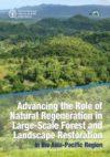 پیشبرد نقش احیای طبیعی در جنگل های با مقیاس بزرگ و احیاء منطقه آسیا و اقیانوس آرام