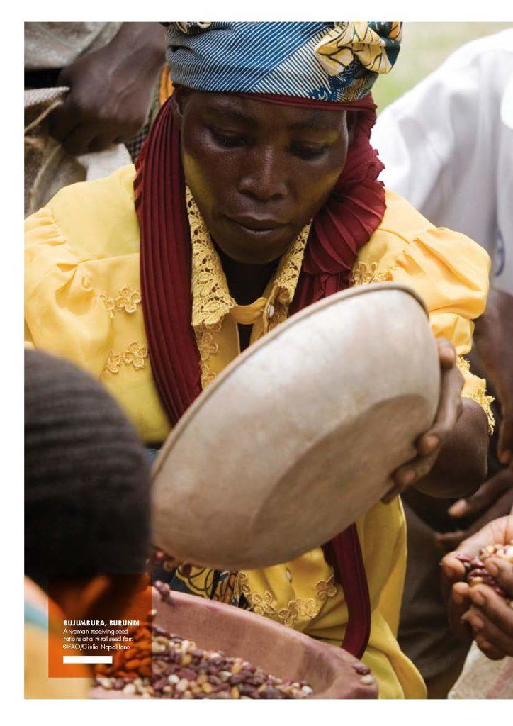 آمار  گرسنگی  و سوء تغذیه در جهان