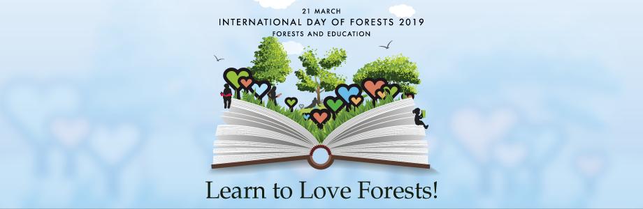 روز جهانی جنگل