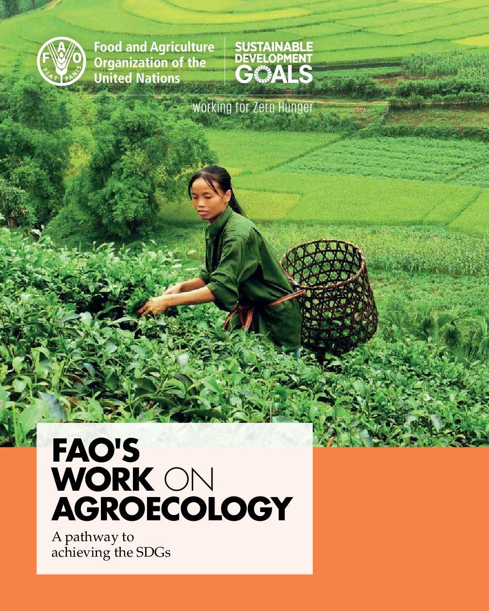 کار فائو در  زمینه اگرواکولوژی  – راه دستیابی به اهداف توسعه پایدار