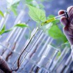 برگزاری نهمین نشست کارگروه  فنی بین الدول منابع ژنتیک  گیاهی