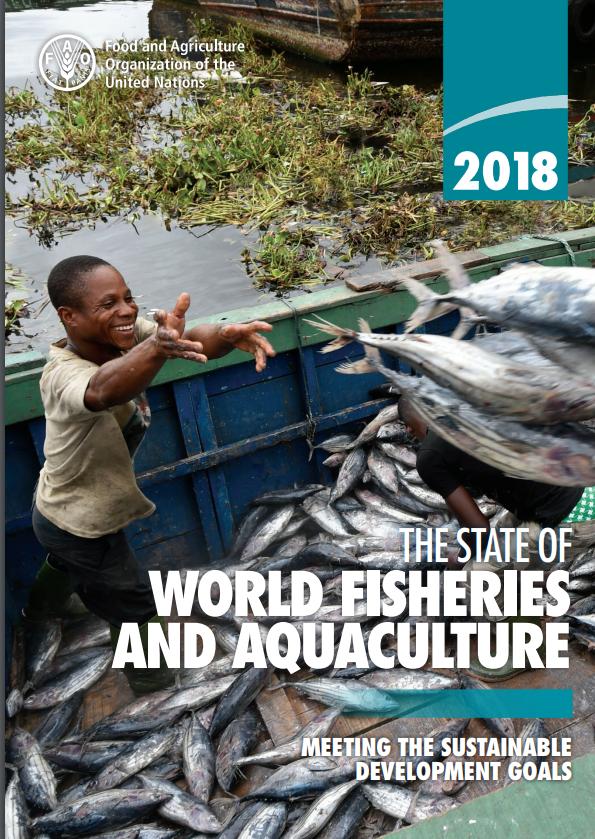 وضعیت  ماهیگیری و  آبزی پروری جهان – سال 2018