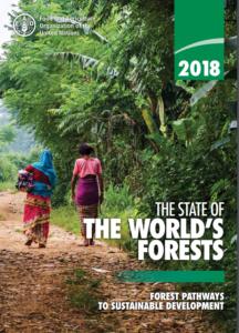 وضعیت جنگل های جهان 2018