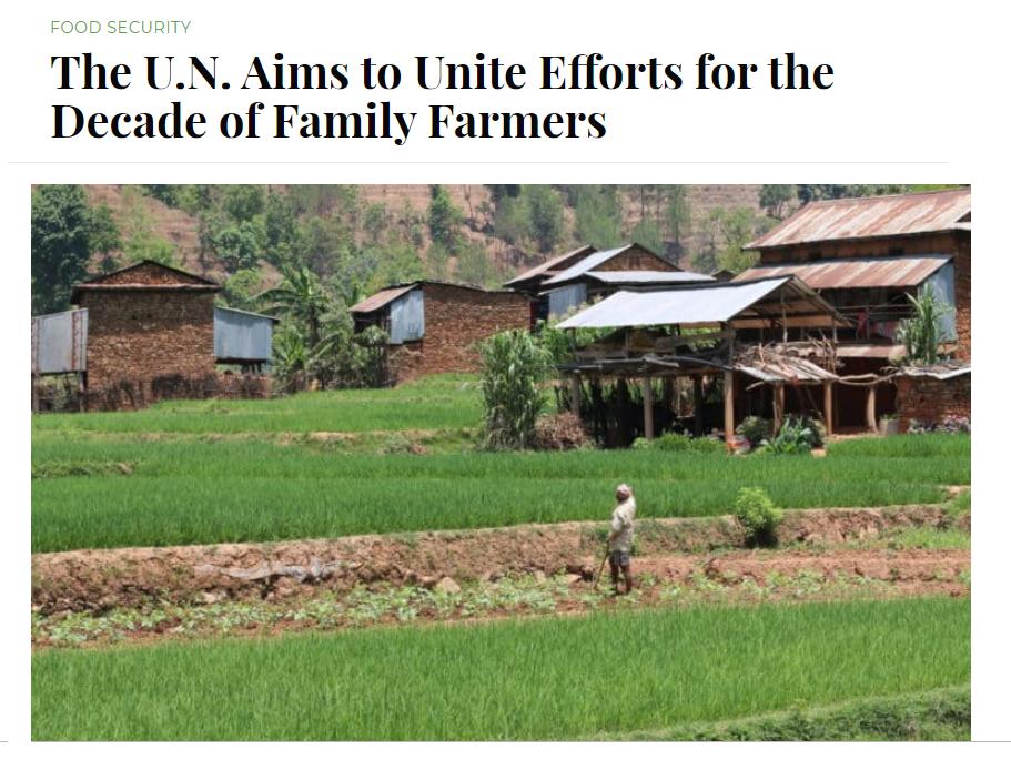 دهه کشاورزی خانوادگی  سازمان ملل متحد  فرصتی فوق العاده برای ریشه کنی فقر و گرسنگی