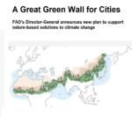 پیشنهاد مدیرکل فائو برای مقابله با تغییرات اقلیمی : ایجاد یک دیوار بزرگ سبز  برای شهر ها