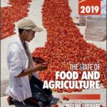 وضعیت جهانی امنیت غذایی وتغذیه در سال 2019