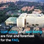 اولین ویدئو کنفرانس  مدیرکل فائو برای ارائه گزارش اقدامات فائو  در زمان اپیدمی کرونا