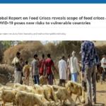 گزارش جهانی سالانه شبکه جهانی علیه بحران مواد غذایی