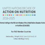 نشست مجازی دهه اقدام سازمان ملل متحد برای تغذیه