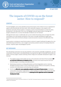 تاثیر کوید 19 بر بخش جنگل و چگونگی پاسخگویی