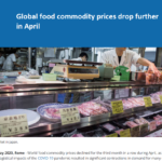 کاهش شاحص بهای مواد غذایی فائو در ماه آوریل