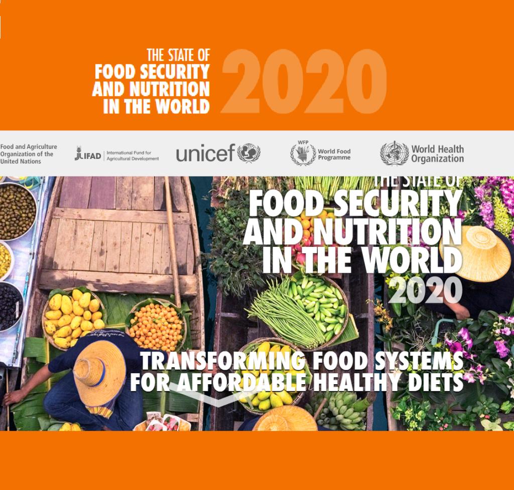 وضعیت امنیت غذایی و تغذیه در جهان سال 2020
